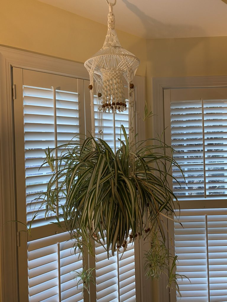 Macrame Large Hanging Basket